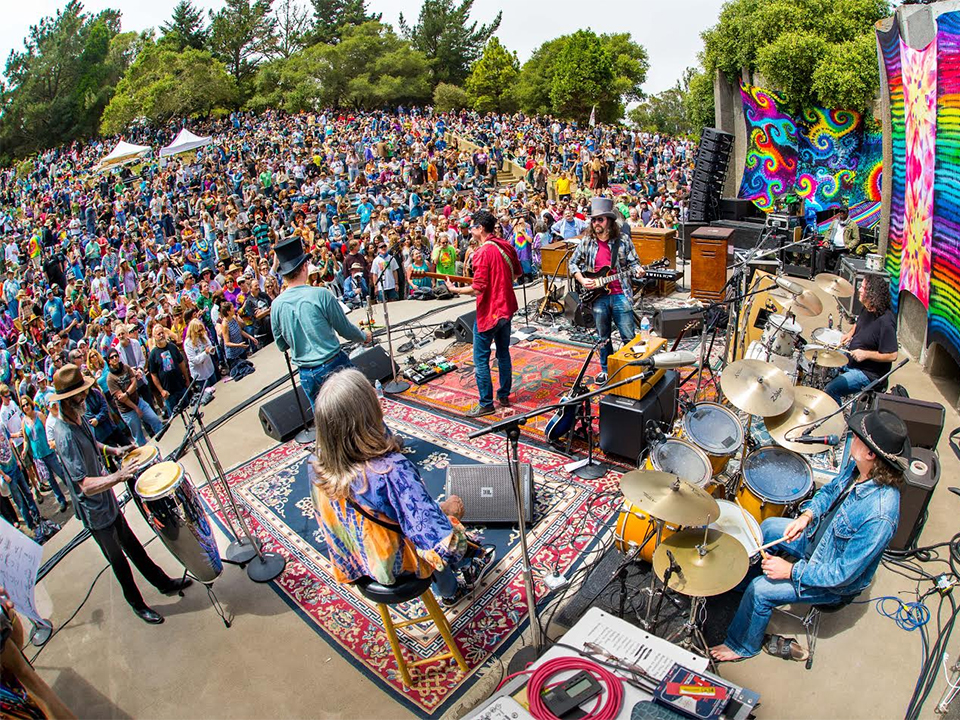 From Dog Parades To Deadheads 3 Offbeat Events In San Francisco This Weekend