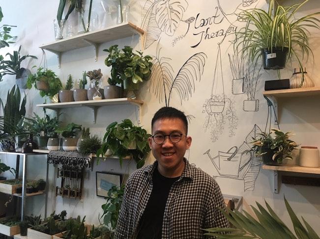 Plant therapy chai