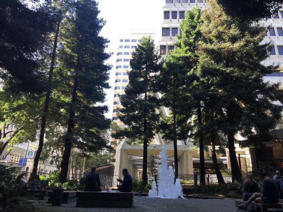 Redwoodpark4.jpg?ixlib=rails 0.3