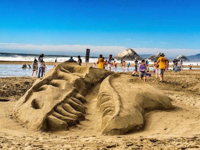 Leap s sandcastle classic ravi kohli