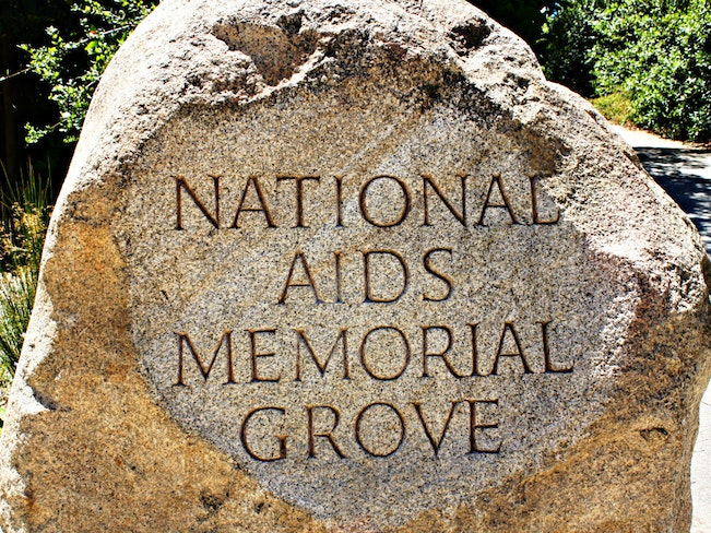 Main image downing aidsmemorial