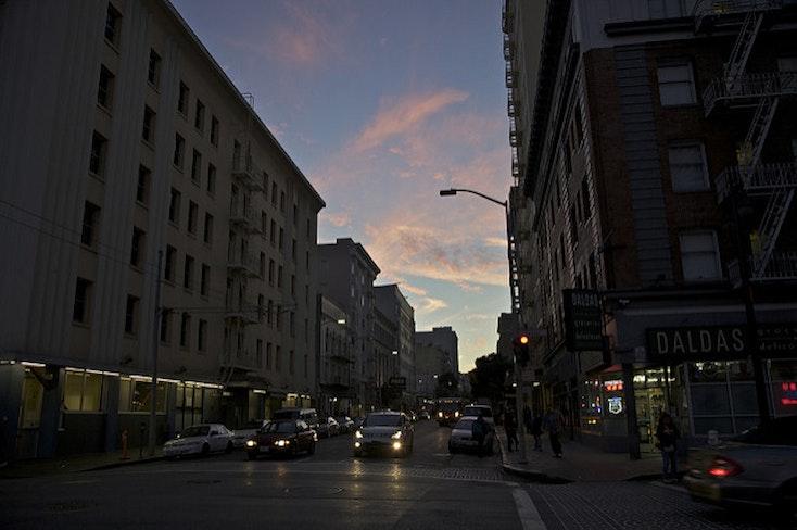 Taylor at twilight