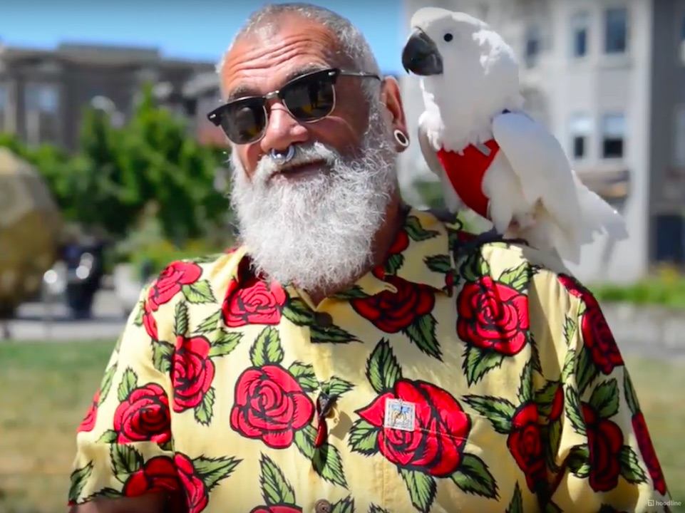 Hayes Valley Resident Turns Heads With Feathered Companion