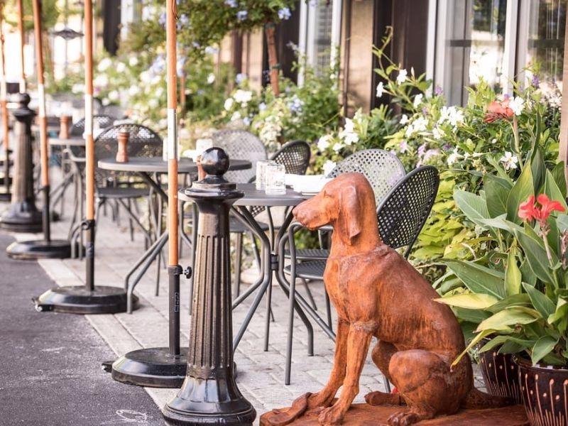 Woof: 7 Dog-Friendly Restaurants And Bars In Philadelphia
