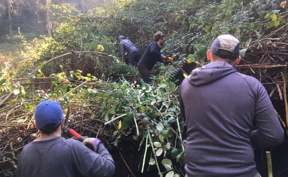 Volunteers at work on the Laguna Honda trails