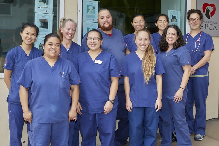 Pacific heights campus vet techs   copy