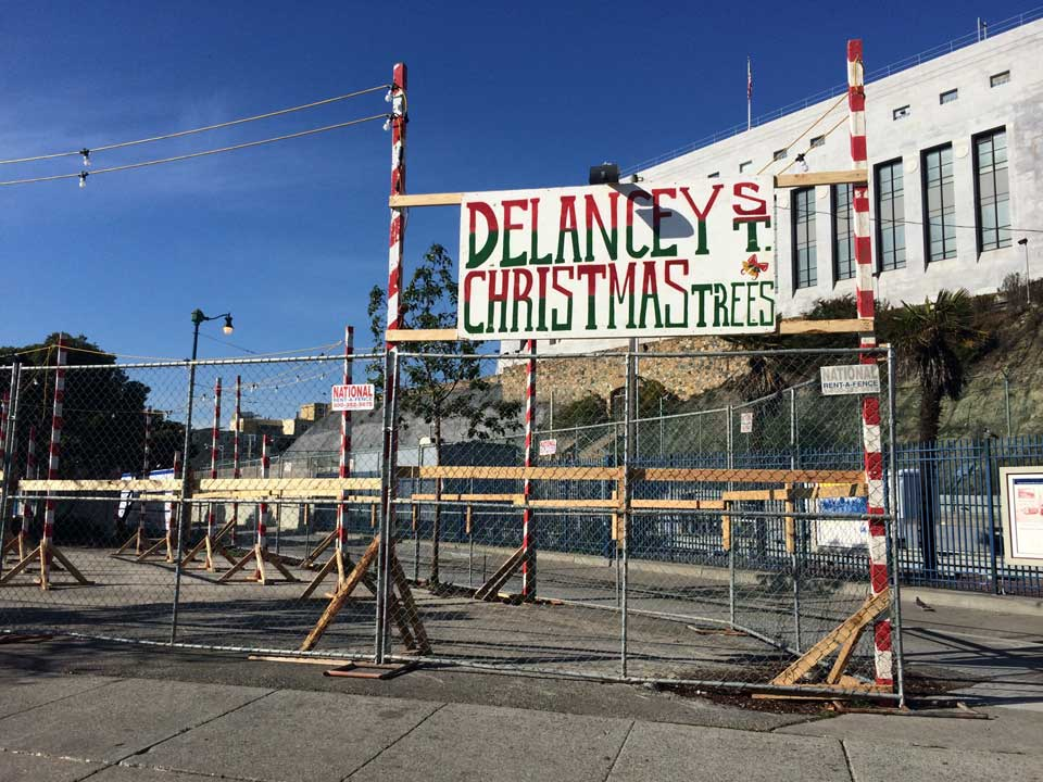 Delancey Street Christmas Trees.Christmas Tree Lot Pops Up At Safeway Parking Lot Hoodline